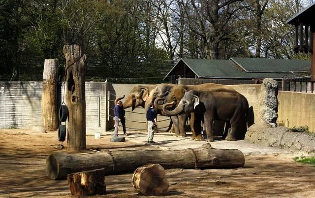 Karlsruhe City Garden Zoo